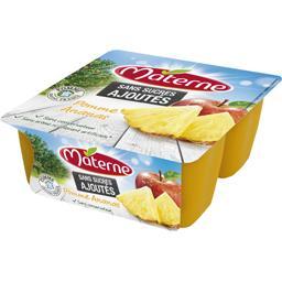 Sans Sucres Ajoutés - Spécialité de pomme ananas