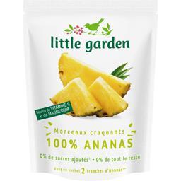 Morceaux craquants 100% ananas