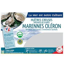 Huître spéciale de claire MARENNES D'OLERON N°3