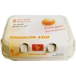 Gros œufs extra-frais de poules au sol