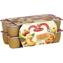 Materne Materne Assortiment de compote de pomme/pêche/abricot/banane les 16 pots de 100 g