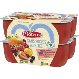 Materne Materne Sans Sucres Ajoutés - Assortiment de spécialité pomme/fraise cassis/mirabelle les 12 pots de 100 g