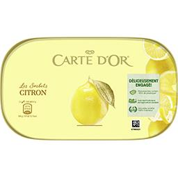 Plein Fruit Carte d'Or Sorbet citron Le bac de 900ml