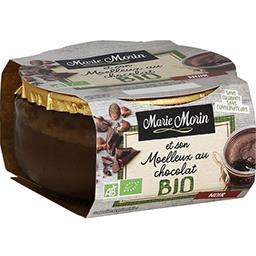 Moelleux au chocolat BIO