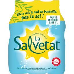 Salvetat Salvetat Eau minérale naturelle gazeuse les 6 bouteilles de 1,25 l