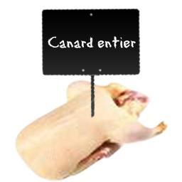 Canard entier