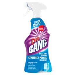 Czystość i połysk w łazience Spray