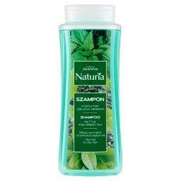 Naturia Szampon pokrzywa i zielona herbata