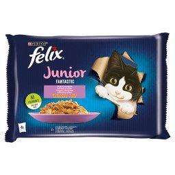 Fantastic Junior Karma dla kociąt wybór smaków w galaretce 340 g (4 x )