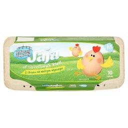 Jaja z chowu na wolnym wybiegu M 10 sztuk
