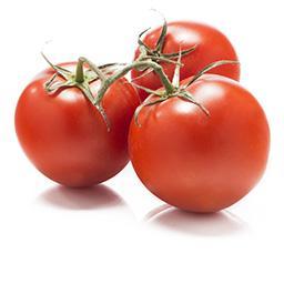 Pomidor gałązka
