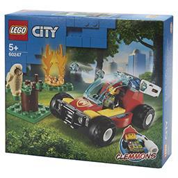 Pożar lasu 60247