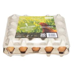 Jaja wolny wybieg L 20 sztuk