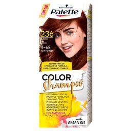 Color Shampoo Szampon koloryzujący kasztan 4-68