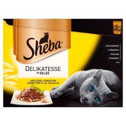 Delikatesse in Gelee Karma pełnoporcjowa 1,02 kg (12...
