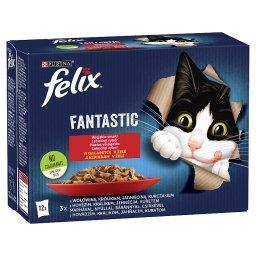 Fantastic Karma dla kotów wiejskie smaki w galaretce 1,02 kg (12 x )