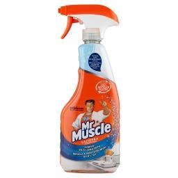 Mandarin Płyn do czyszczenia i dezynfekcji łazienki