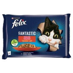 Fantastic Karma dla kotów wiejskie smaki w galaretce 340 g (4 x )