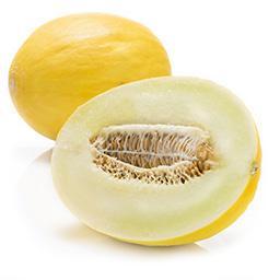 Melon miodowy żółty