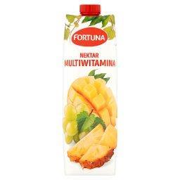 Nektar multiwitamina1 l