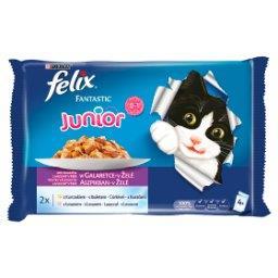 Fantastic Junior Karma dla kociąt wybór smaków w gal...