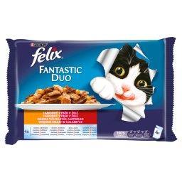 Fantastic Duo Karma dla kotów wiejskie smaki w galaretce 400 g