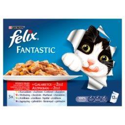 Fantastic Karma dla kotów wybór mięs w galaretce 1200 g