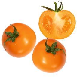 Pomidor żółty
