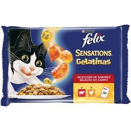 Comida Húmida para Gato Gelatinas com Carne