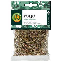 Chá poejos planta
