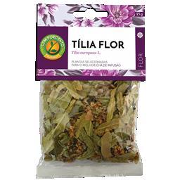 Chá tília planta