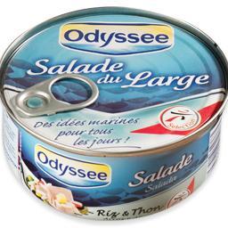 Salada de atum com arroz