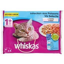 Comida húmida para gato de peixe
