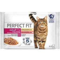 Comida húmida de galinha para gato