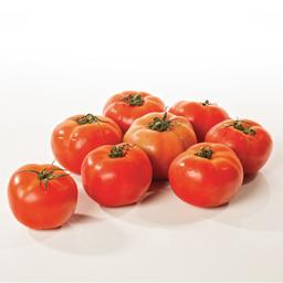 Tomate  57/67