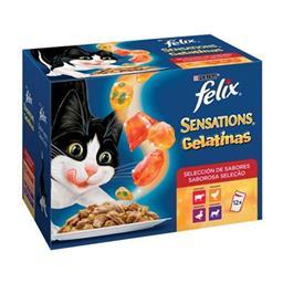 Comida húmida para gato seleção do campo