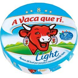 Queijo Light 8 porções