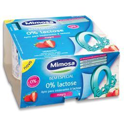 Iogurte Magro de Morango 0% Lactose