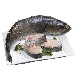 Corvina mar (+3kg) inteiro fresco