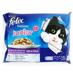 Comida húmida para gato júnior