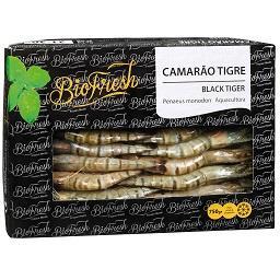 Camarão black tiger 20/30