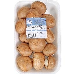 Cogumelo portobello grande