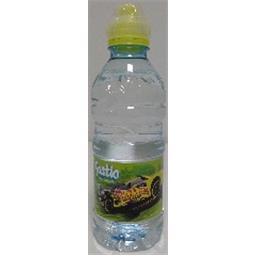 Água do fastio 0,33lx1 pet b&h